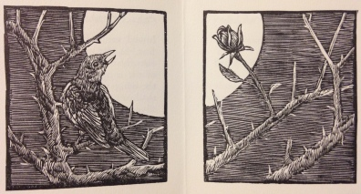 Wood engraving by Alan James Robinson for The Nightingale and the Rose.