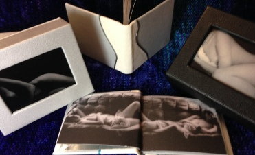 Double endsheets: full silver leather followed by printed endpapers.